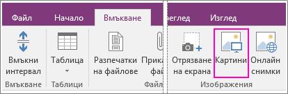 Екранна снимка на бутона за вмъкване на картини в OneNote 2016.