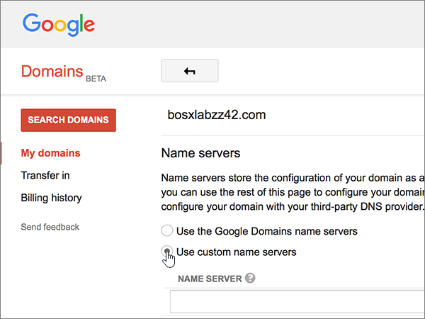 Google-Domains-BP-Повторно делегиране-1-1