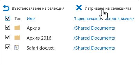 2016 второ ниво Кошче на SharePoint с всички избрани елементи и Изтрий осветена