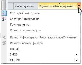 опции за сортиране, групиране или филтриране във външни списъци