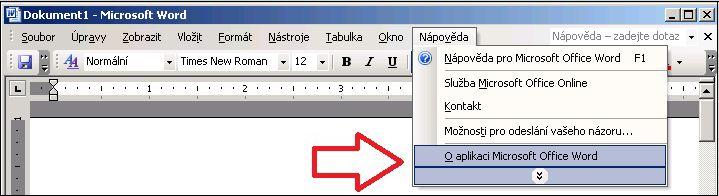 Word 2003, Nápověda, O aplikaci
