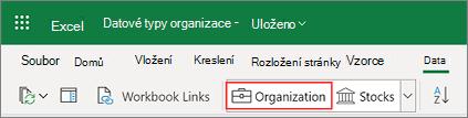 Datové typy Organizace v Excelu z Power BI