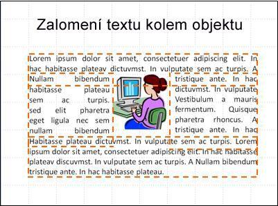 Snímek s vloženým objektem a se zobrazenými textovými poli, s úplným textem