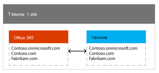 Jednoho klienta Office 365 namapované jedné sítě Yammer