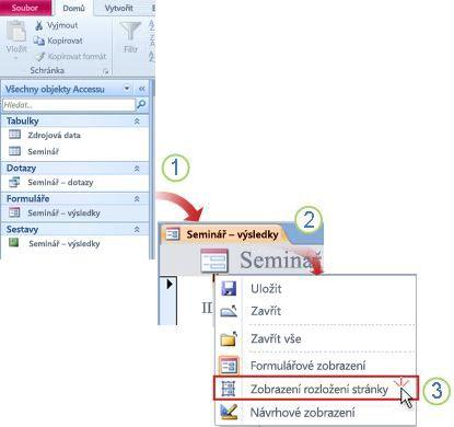Otevřete formulář nebo sestavu v zobrazení rozložení