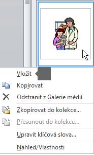 Obrázek vložíte tak, že pravým tlačítkem kliknete na obrázek miniatury a vyberete Vložit.