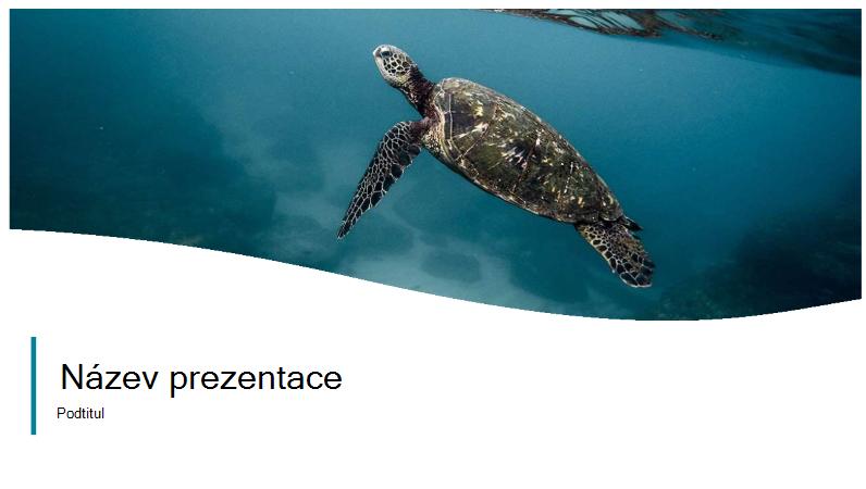fotka prezentace o oceánu