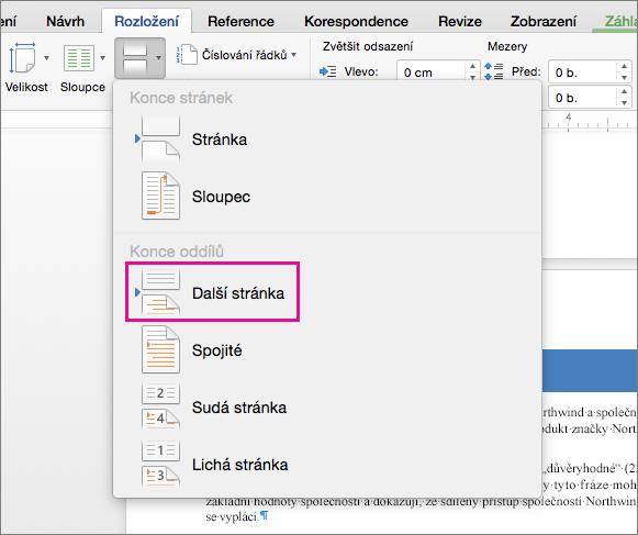 Kliknutím na možnost Další stránka vložíte konec oddílu, díky kterému začne další text na následující stránce.