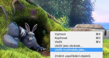 Snímek obsahující obrázek a příkaz Uložit jako obrázek vybraný v místní nabídce.