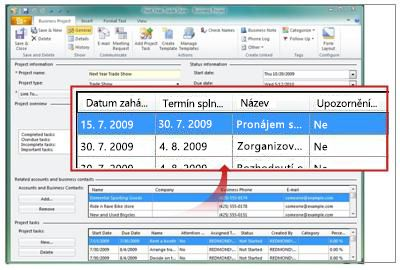 Zobrazení úkolů projektu v záznamu obchodního projektu