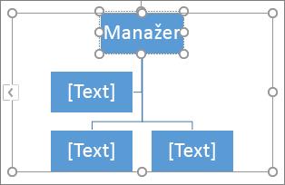 Psaní textu do pole v obrázku SmartArt