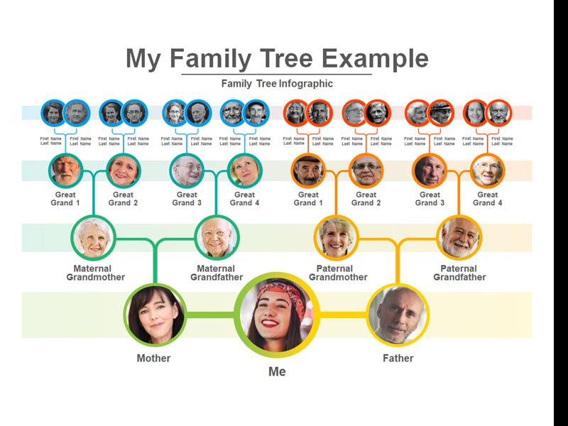 fotka prezentace o rodinných stromech