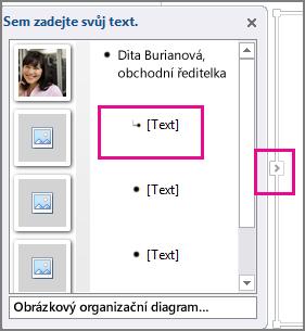 Podokno textu obrázku SmartArt se zvýrazněnou položkou [Text] a ovládacím prvkem podokna textu