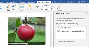 Wordový dokument s obrázkem a podoknem Alternativní text napravo