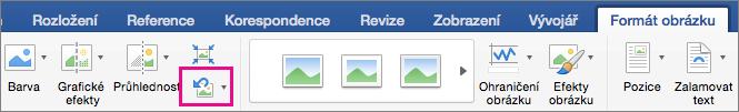 Na kartě Formát obrázku se zvýrazní možnost Obnovit obrázek.