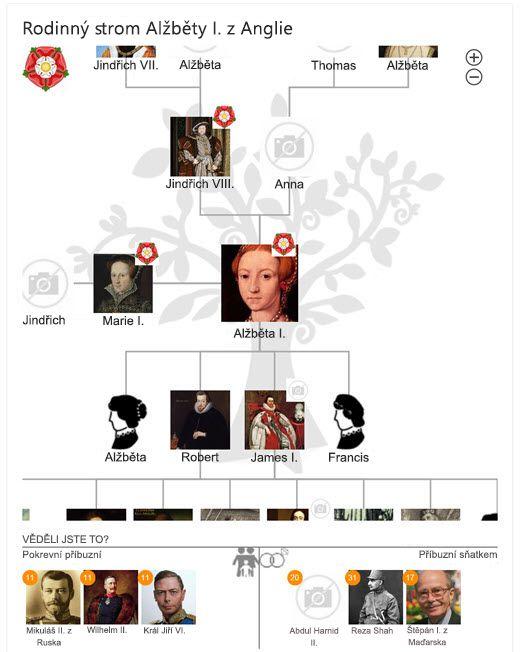 Rodokmen Alžběty I. v Bingu