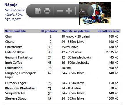 Vložený soubor PDF katalogu produktů zobrazený ve čtečce souborů PDF