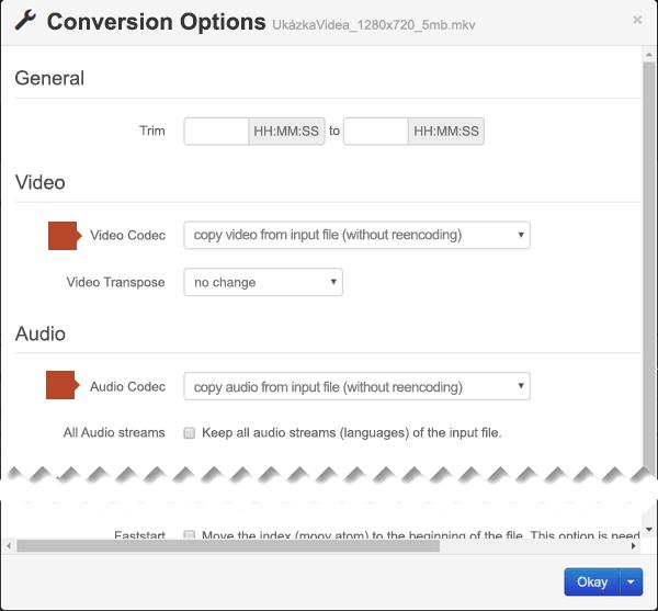 Dialog Conversion Options (Možnosti převodu) s možnostmi videokodeku a zvukového kodeku