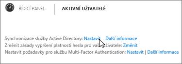 Zvolení možnosti Nastavit vedle Synchronizace služby Active Directory