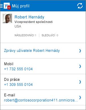 Stránka s profilem v aplikaci Yammer