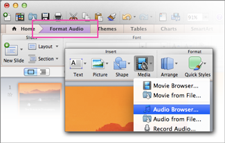 Otevření zvukového prohlížeče