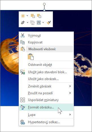 Snímek obrazovky s možností Formát obrázku v Publisheru