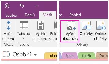Snímek obrazovky s tlačítkem Vložit výřez obrazovky v OneNotu 2016.