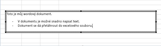 Tento vložený objekt je wordový dokument.