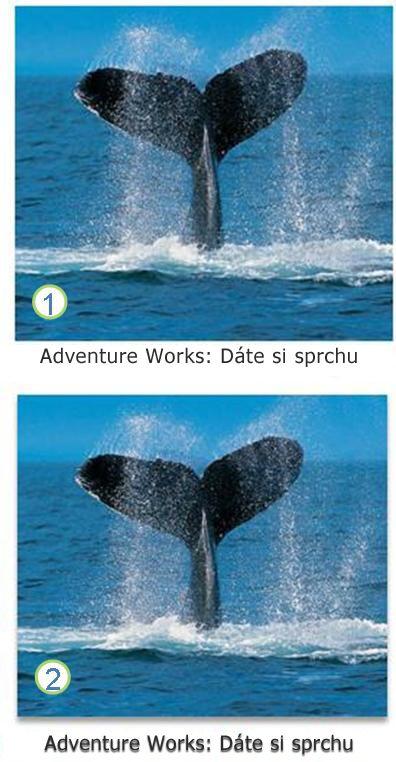 Efekty u textu a obrázků