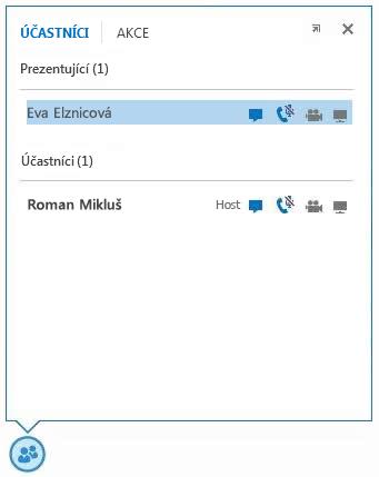 Snímek obrazovky s ikonami vedle jmen účastníků, které označují dostupnost funkcí rychlých zpráv, zvuku a videa a sdílení