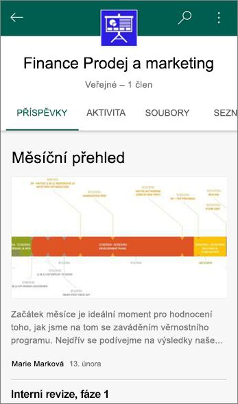 Snímek obrazovky s kartou příspěvky na týmovém webu