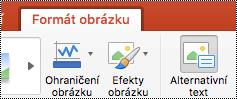Tlačítko Alternativní text na pásu karet v PowerPointu pro Mac