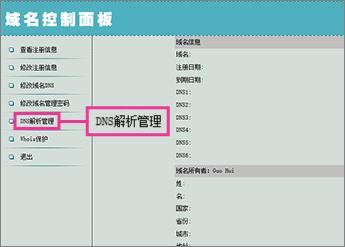 """Klikněte na """"DNS解析管理"""""""