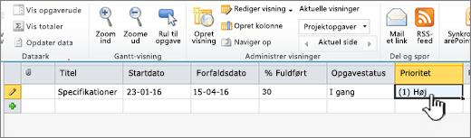 Udfyld med titlen, datoerne og statussen for din projektopgave