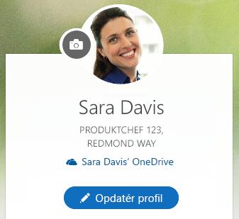 Klik på Opdater profil for at ændre dine oplysninger