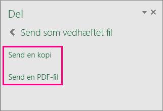 Viser indstillingerne for vedhæftede filer i Excel 2016 til Windows