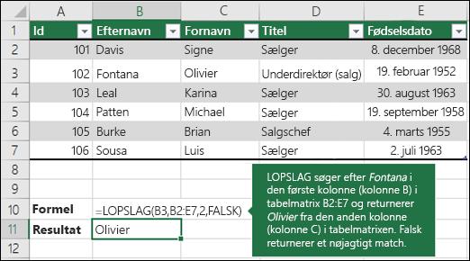 LOPSLAG-eksempel 1