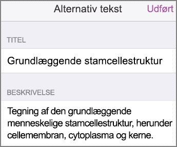 Dialogboksent Alternativ tekst på iPhone.