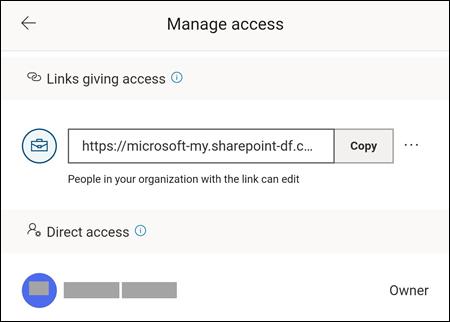 Menuen Administrer adgang, som giver dig mulighed for at ændre indstillinger samt se, hvem filen er delt med.
