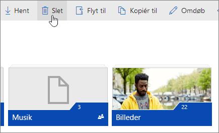 Et skærmbillede, der viser knappen Slet på OneDrive.com.