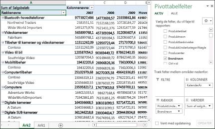 Pivottabel, der viser eksempeldata