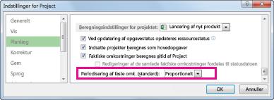 Fanen Tidsplan i dialogboksen Indstillinger for Excel