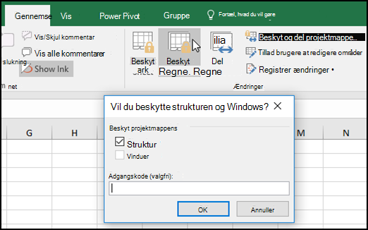 Dialogboksen Beskyt struktur og Windows