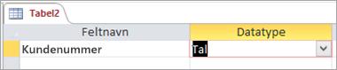 Første feltnavn og datatype i en ny Access-tabel