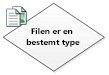 Filen er en bestemt type
