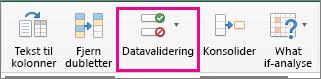 Datavalidering under fanen Data