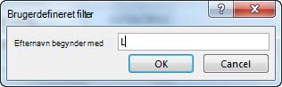 """Dialogboksen Brugerdefineret filter med bogstavet """"L"""" angivet."""