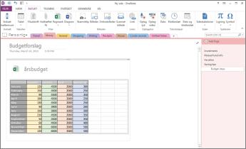 Oversigt over et Excel-regneark på en side i OneNote