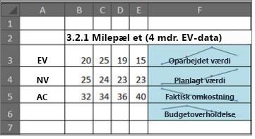 Brug af minidiagrammer til projektstyring