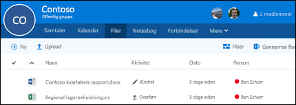 Klik på Filer i din Office 365-gruppe for at se en liste over filer og mapper, der er gemt i din gruppe